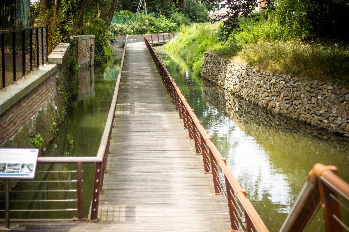 Demer River Restoration Tractebel